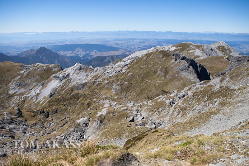 Mt Arthur