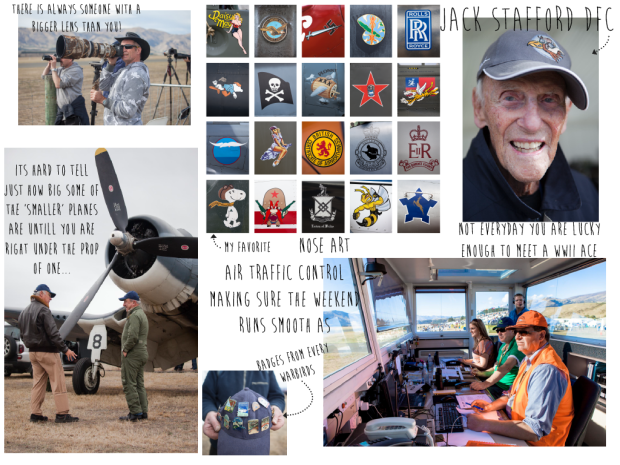 Warbirds Blog-03